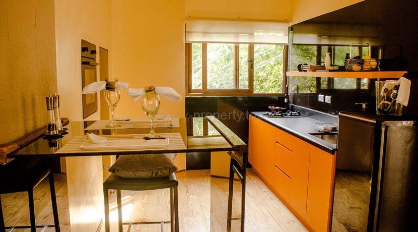 One Diniwid Boracay Studio for sale